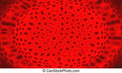 Blood cells animation