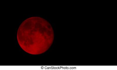 Blood Moon In The Night Sky - Blood red moon rises in the...