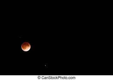 red moon qld - photo #23