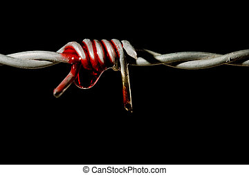 symbol of torture - Blood on a barbed wire spike, symbol of...