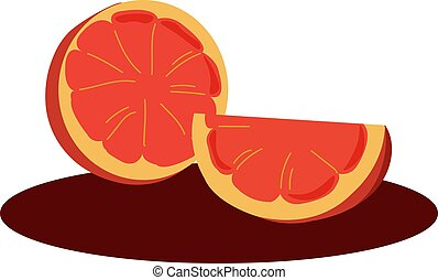 Blood orange, illustration, vector on white background.