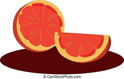 Blood orange, illustration, vector on white background.