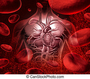 Blood System And Circulation - Blood system and circultaion...