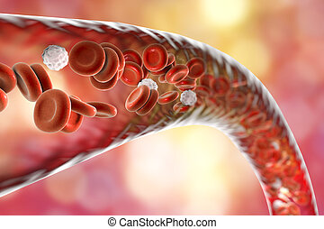 Blood vessel with flowing erythrocytes and leukocytes