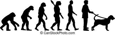 Bloodhound evolution