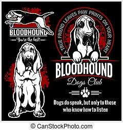 Bloodhound - vector set for t-shirt, logo and template badges