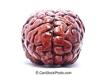 Bloody Brain on White
