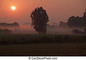 Bloody Misty Sunrise