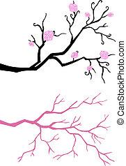 bloom., træ branch