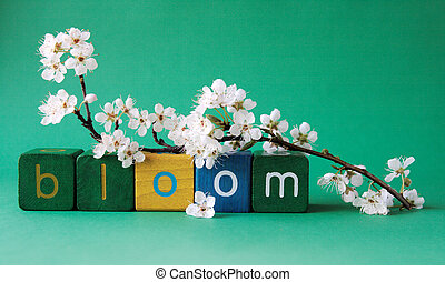 bloom word with plum blossoms