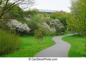 Blooming alley with trees in the park in Fulda, Hessen,...