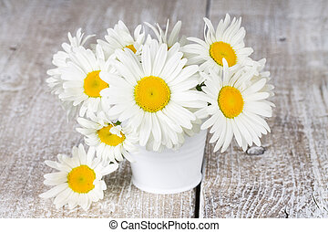 Blooming chamomile flowers in a bucket