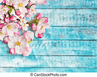 Blooming cherry blossoms with old wooden planks.