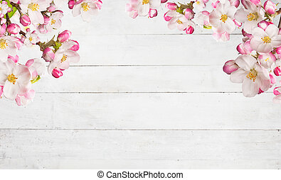 Blooming cherry blossoms with old wooden planks