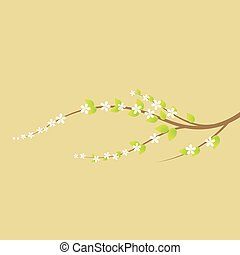 Blooming cherry tree branch in spring.