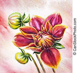 Blooming Dahlia flower, watercolor painting