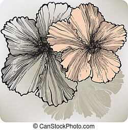 Blooming hibiscus flower, hand-drawing. Vector illustration.