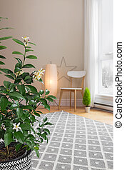 Blooming lemon tree in a room with modern decor