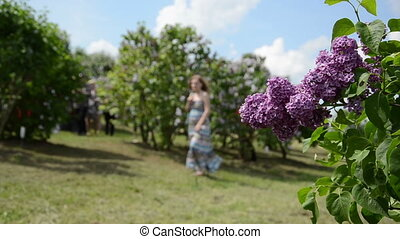 blooming lilac and woman