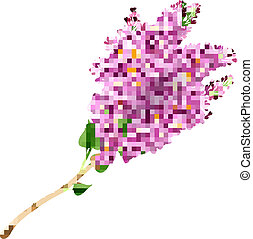 Blooming lilacs - The branch of blooming lilacs. EPS 10....