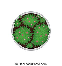 Blooming round flower bed. View from above. Vector illustration on white background.
