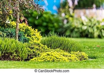Blooming Spring Time Garden Vegetation