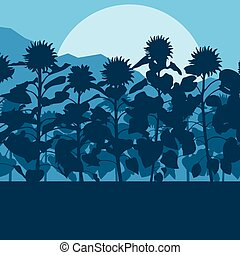 Blooming sunflowers field vector background landscape