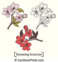 Blooming tree. Set collection. Hand drawn botanical blossom branches on white background. Vector illustration