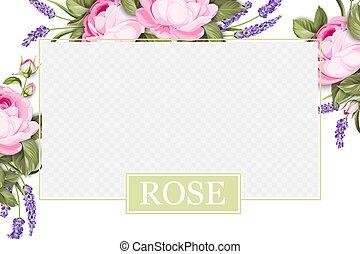 bloomings., rosa, crema, skincare, disegno, lavanda, sopra, bordo, disegno, border., sagoma, prodotto, trasparente, fiore, provenza, bellezza, pacchetto, rigenerare, etichetta, rosa, coperchio, finestra
