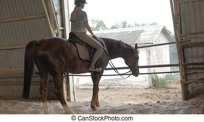 bloopers. funny a case with a horse. the girl sits on a...