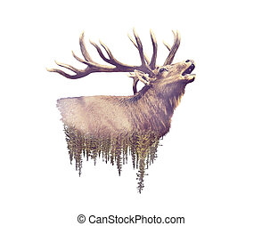 blootstelling, watercolor, forest., effect, eland, dubbel