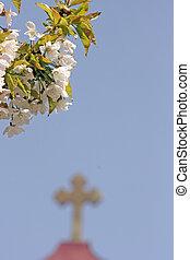 blossom and cross