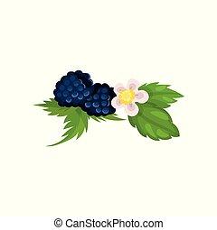 blossom , bladeren, vector, braambes, ilustration