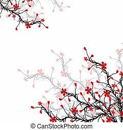 Beautiful blossom cherry on white background