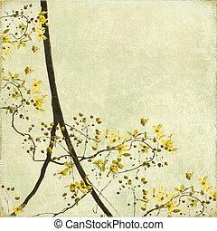 blossom , verward, grens, achtergrond