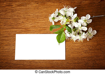 Blossom with white card