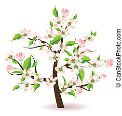 Bolssoming apple tree with flowers and green leaves