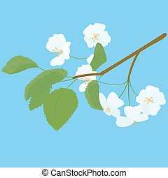 Blossoming Apple Tree spring Twig on blue