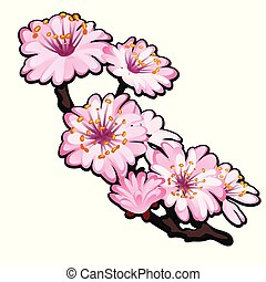 Blossoming branch of a tree pink flowers in spring isolated on white background. Vector cartoon close-up illustration.