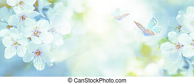 Blossoming cherry tree, butterfly on light sky background in sunlight. Soft vintage pastel toned. Springtime sakura flower panorama . Copy space banner