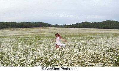 Blossoming daisies