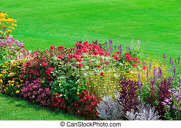 Blossoming flowerbeds in the park.