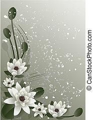 blossoming lotus - Vector illustration - fine blossoming...