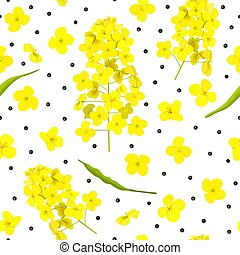 Blossoming Rapeseed, flowers, seeds, leaf seamless pattern ...