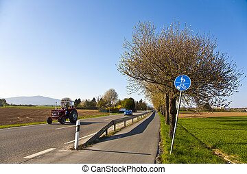 blossoming tree at a street with bicycle lane