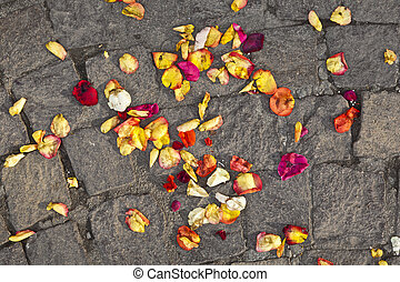 blossoms of flowers lying on the ground after a wedding ceremony