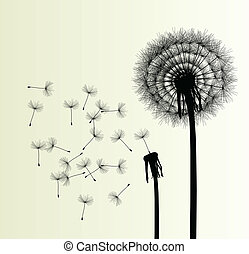 Blow Dandelion vector background for poster