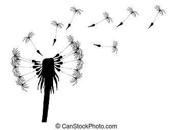 blow-dandelion - Vector illustration of blowing dandelion on...