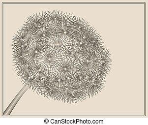 Blowball woodcut - dandelion in vector woodcut style