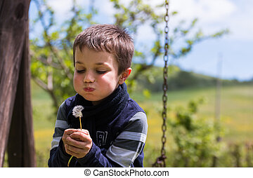 Blowing Dandelion Seeds in the Wind